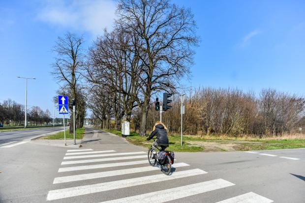 Nowa droga dla rowerów będzie kończyć się na skrzyżowaniu z ul. Gdańską (na zdjęciu).