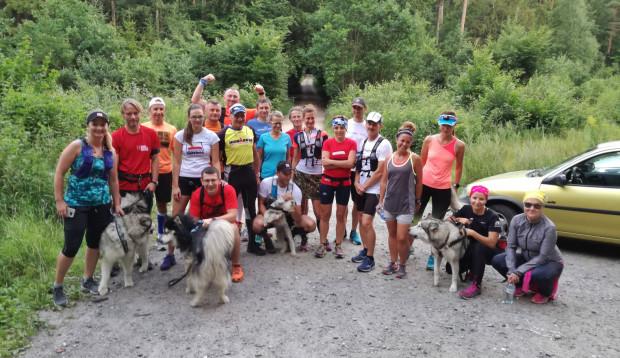 Grupa biegająca z psami po Trójmiejskim Parku Krajobrazowym.