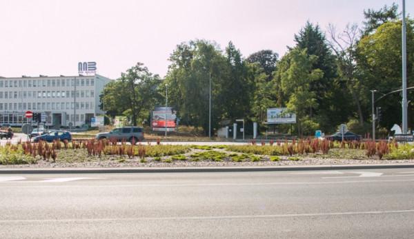 Skrzyżowanie Grunwaldzka-Czyżewskiego-Droga Zielona, do którego ma być podłączona ul. Nowa Spacerowa z tunelem pod Pachołkiem (w miejscu drzew).