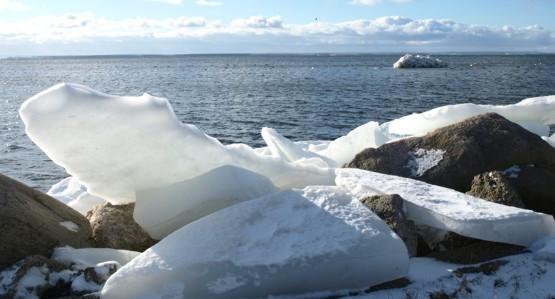 Skuty lodem brzeg od strony Zatoki Gdańskiej