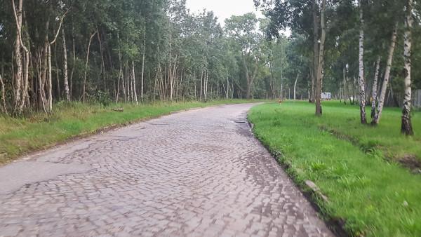 Fragment drogi dla rowerzystów z Westerplatte sugerowanej przez autorów opracowania.