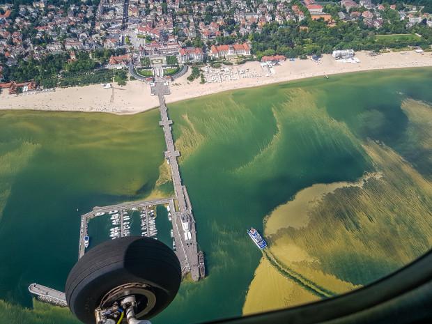 Zmiana kierunku prądów sprawiła, że widoczne na zdjęciu sinice opuściły morze na wysokości Sopotu, co pozwoliło otworzyć kąpieliska. Na razie nie wiadomo, na jak długo.