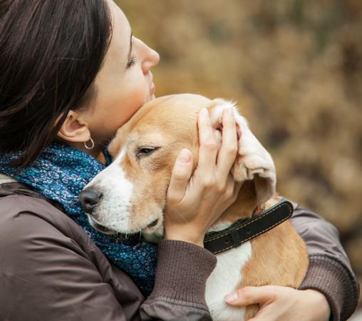 Nie wystarczy zachipować psa - należy również dodać jego dane do bazy.