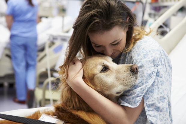 Dla każdego człowieka, a zwłaszcza dla osoby chorej kontakt ze zwierzęciem jest ważny. Dotyk odgrywa bardzo dużą rolę w procesie leczenia i w przypadku wielu terapii.