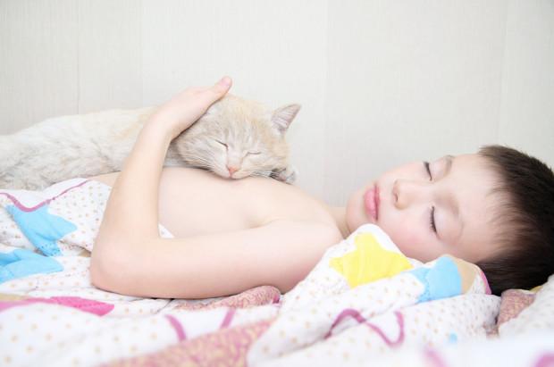 Felinoterapia to zajęcia terapeutyczne z udziałem kota - sprawdza się przy wielu zaburzeniach.