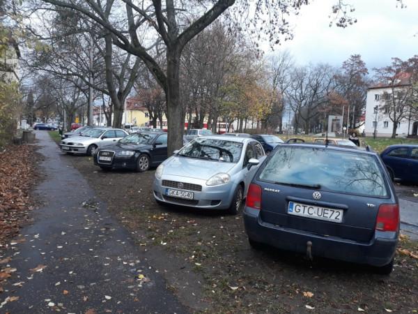 Polskie przepisy prawa nie pozwalają parkować na trawnikach do czasu aż zostaną zdewastowane przez kierowców. Straż miejska woli im jednak wkładać za szybę żółte kartki niż wystawić mandat.