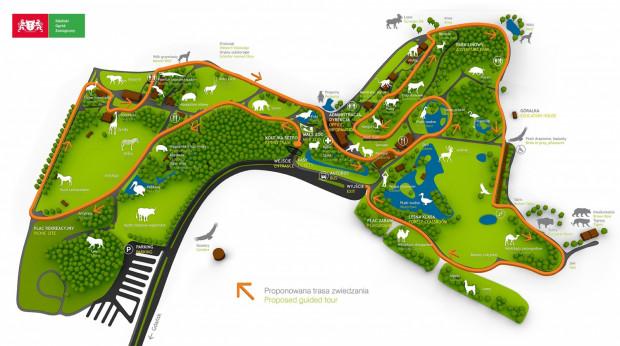 Plan oliwskiego zoo. Wybieg gepardów, przy którym ma powstać restauracja dla 200 osób, znajduje się w lewym górnym rogu. W tym sezonie otwarta zostanie restauracja, która znajduje się przy wyjściu, widocznym w centralnej części grafiki.