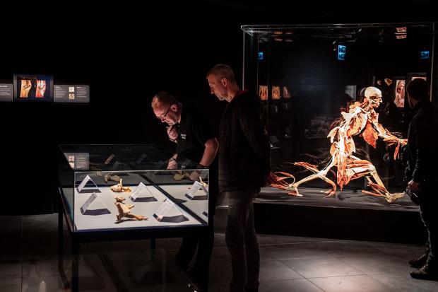 Wystawę można podziwiać do 26 czerwca w Galerii Metropolia w Gdańsku Wrzeszczu (poziom -1).