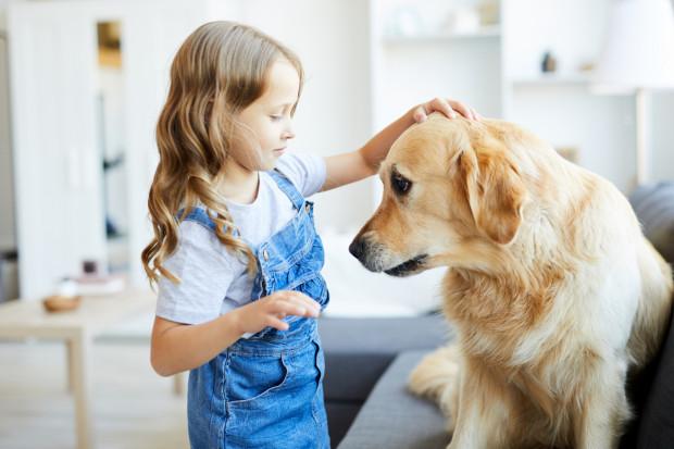 Zajęcia terapeutyczne z udziałem psa nazywa się potocznie dogoterapią.