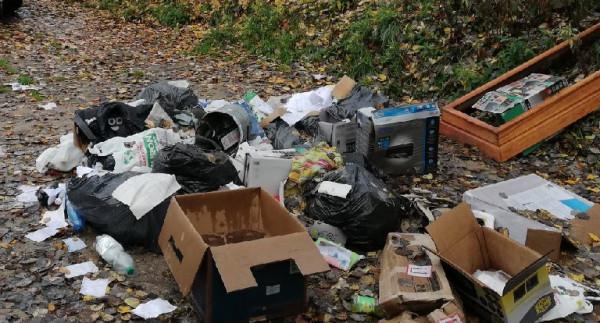 Śmieci w lasach to wciąż częsty widok podczas spacerów.