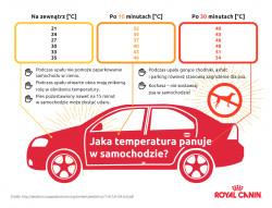 Temperatura panująca w samochodzie
