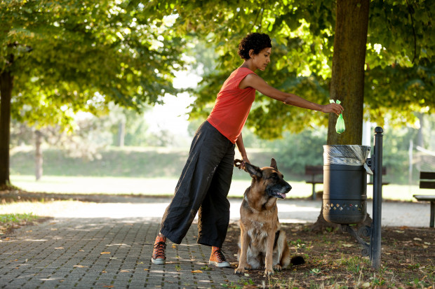 Bycie opiekunem zwierzęcia przynosi wiele radości i satysfakcji, ale również obowiązków. Zobowiązuje właściciela do przestrzegania prawa oraz dbania o środowisko.
