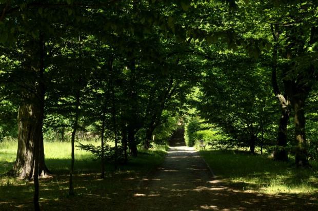 Park Królewskiej Doliny - pełne uroku miejsce w Gdańsku, którego historię będzie można poznać podczas spaceru, który odbędzie się w piątek, 26 lipca.