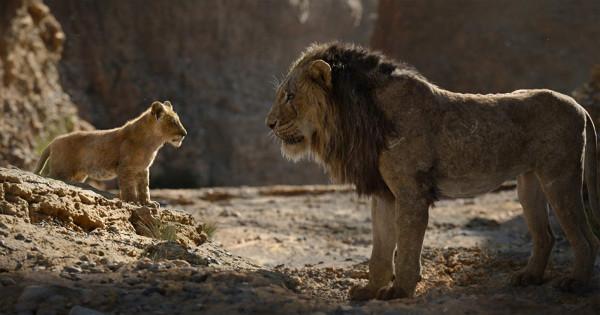 """""""Król Lew"""" to klasyczna opowieść o walce dobra ze złem, rodzinnej miłości, zaskakującej nieraz przyjaźni i magii przyrody, której naczelnym hasłem jest starannie wyartykułowane w filmie: """"Wszyscy jesteśmy złączeni w wielkim kręgu życia""""."""