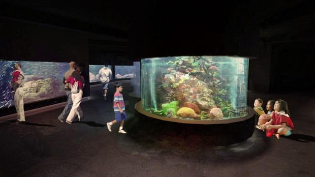 W 2021 roku Akwarium Gdyńskie ma zyskać nowy wygląd po przebudowie.