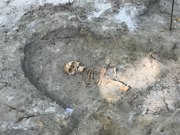 Odnaleziono Szczątki Obrońcy Westerplatte