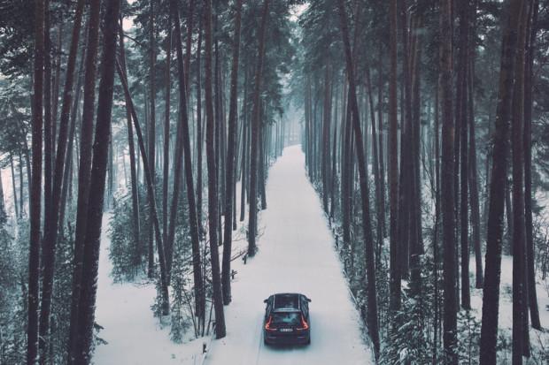 Zasada akcji jest prosta: wypożyczasz choinkę w salonie Volvo, dbasz o nią i oddajesz ją po kilkunastu dniach, następnie drzewko wraca do szkółki leśnej.