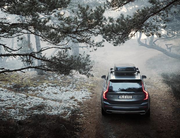 Choinkowa akcja Volvo została odebrana bardzo pozytywnie, dlatego w tym roku wypożyczalnia drzewek zostanie uruchomiona już po raz trzeci.