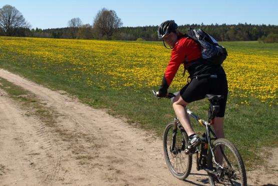 Wycieczka poza Trójmiasto, np: szlakiem rowerowym z Gdańska do Lęborka