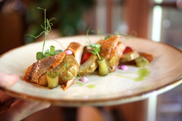 Śledź bałtycki z młodym marynowanym ziemniakiem, rabarbarem i kwaśną śmietaną