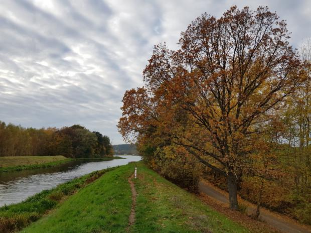 Single track po wale przy rzece Raduni