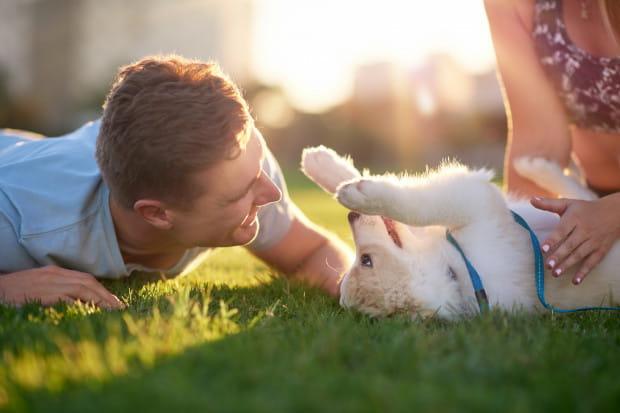 Właściciele psów żyją radośniej i... dłużej?