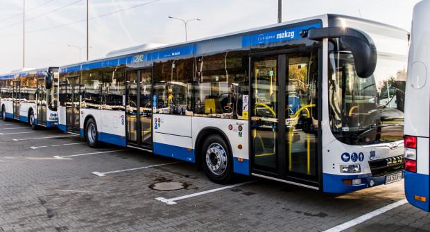 Pół miliona złotych kar to efekt kontroli ZKM Gdynia wśród operatorów jeżdżących po mieście.