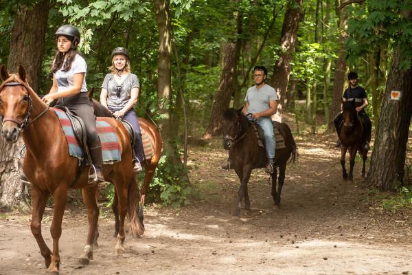 Rehabilitacja ruchowa jest niezwykle istotnym elementem powrotu do zdrowia dla chorych po epizodach kardiologicznych. Jako że wielu osobom brakuje silnej woli, aby ćwiczyć systematycznie, UCK i RDLP przygotowały dodatkową zachętę - ci, którzy ćwiczą przynajmniej trzy razy w tygodniu, na kolejny trening byli zabierani do lasu na zajęcia z jazdy konnej bądź nordic walking.