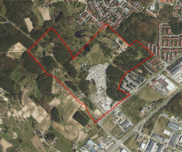 Teren na Dąbrowie objęty projektem nowego planu miejscowego.