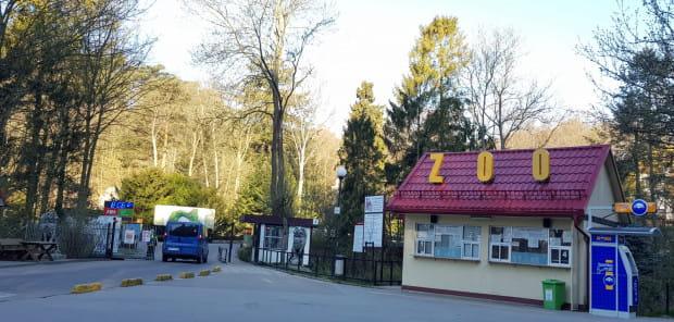 Przy kasie gdańskiego Zoo trzeba będzie głębiej sięgnąć do kieszeni. Niebawem wejdą w życie podwyżki cen biletów