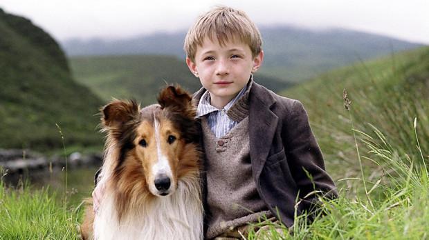 """""""Lassie"""": uboga rodzina na skutek pogarszającej się sytuacji materialnej, musi sprzedać swojego ukochanego pupila, by wyjść z kłopotów finansowych. Z decyzją nie może pogodzić się mały Joe. Przyjaźń chłopca i psa zostaje wystawiona na próbę."""
