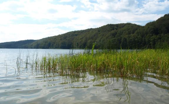 Jezioro Głębokie niedaleko Przywidza, jedno z najczystszych w pobliżu Trójmiasta.