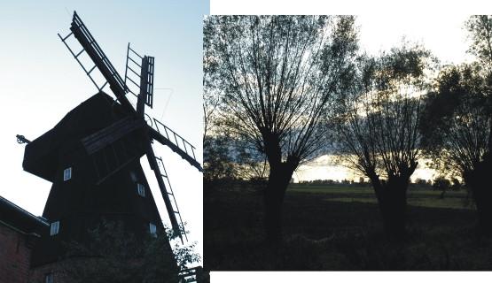 Wiatrak w Tczewie oraz żuławskie panoramy