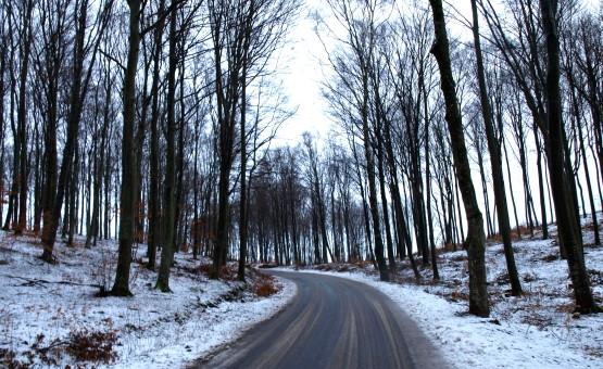 Pomimo obfitych opadów śniegu dnia poprzedniego, drogi Północnych Kaszub były przejezdne