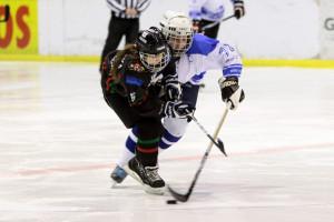 Hala Olivia to przede wszystkim hokej: nie tylko seniorów, ale i młodzieży.
