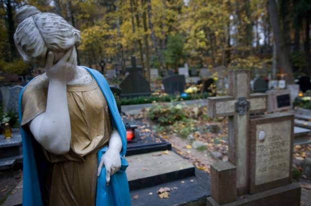Wydaje się, że na cmentarzach czas się zatrzymał, ale to nieprawda. Sprawdziliśmy co się na nich zmieniło od ostatniego roku.