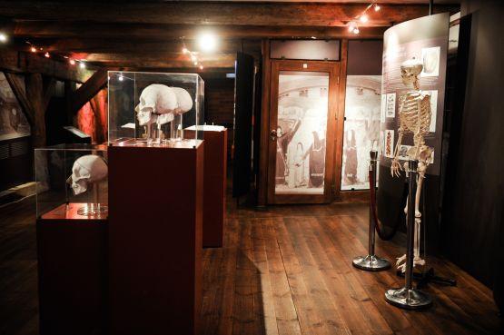 Na zdjęciu Spichlerz Błękitny Lew, oddział Muzeum Archeologicznego w Gdańsku.